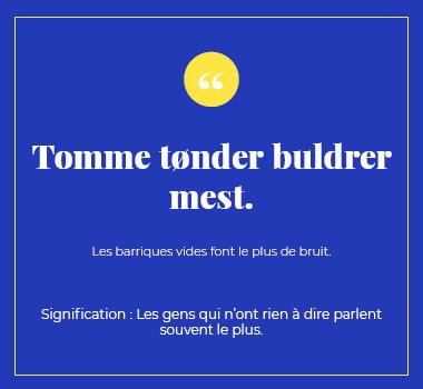 Illustration proverbe en Danois. Eu Coordination agence de traduction de/vers le Danois.