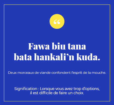 Illustration proverbe en Haoussa. Eu Coordination agence de traduction de/vers le Haoussa.