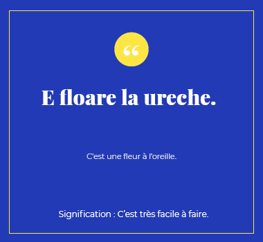 Illustration proverbe en Roumain. Eu Coordination agence de traduction de/vers le Roumain.