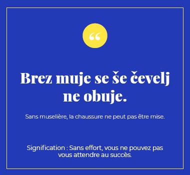 Illustration proverbe en Slovène. Eu Coordination agence de traduction de/vers le Slovène.